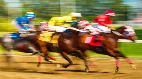 Horse Racing Zia Park Casino Hotel Amp Racetrack